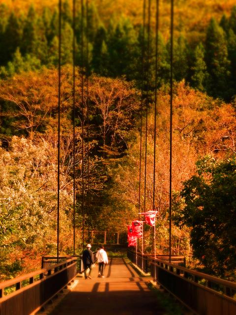 04梵字川渓谷なびら雪吊橋★DSC04601.JPG
