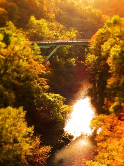 06梵字川渓谷なびら雪吊橋から★DSC04614.JPG