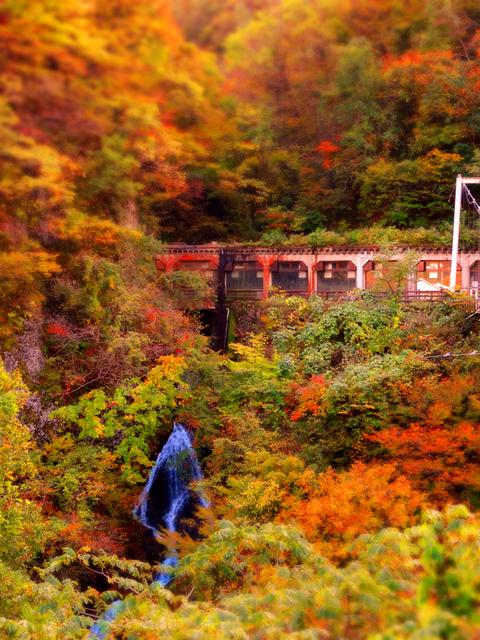 10梵字川渓谷亀の滝★DSC04656.JPG