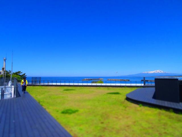 22加茂水族館36s.jpg