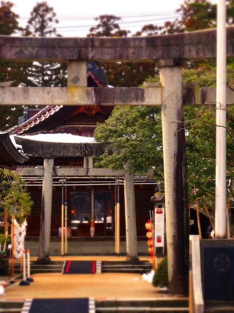 34庄内神社★DSC05926.JPG