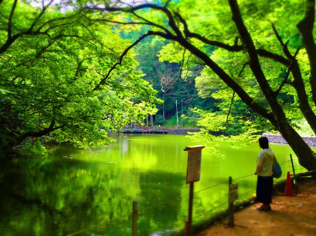 44善寶寺月喰みの池s.jpg