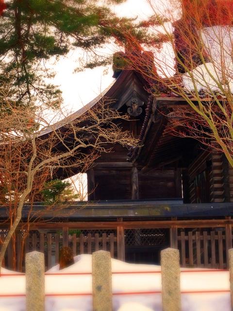 47庄内神社★DSC05941.JPG