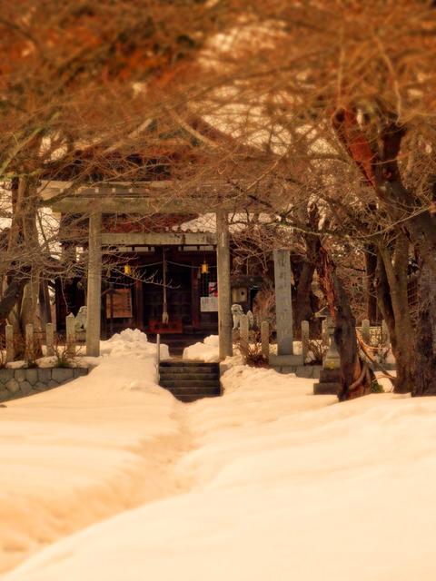 48鶴岡護国神社s★DSC05954.jpg