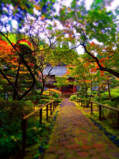 71玉川寺s.jpg